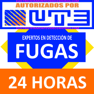 fugas electricas